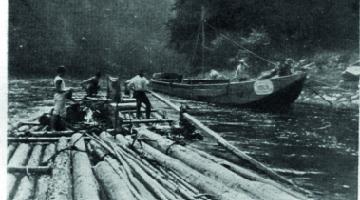 Flottage de bois