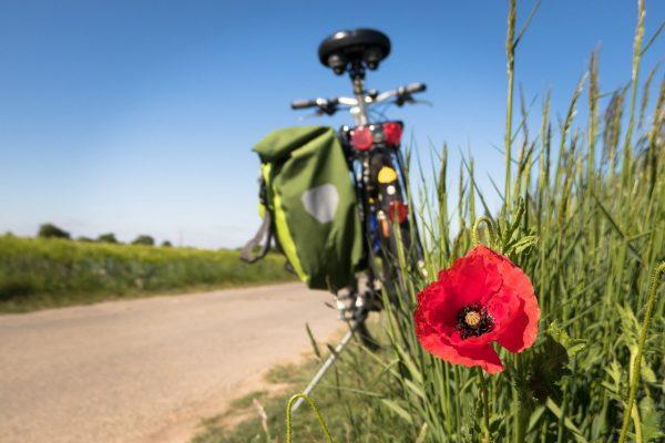 L'itinéraire La Loire à Vélo