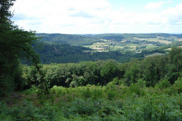 Regionaler Naturpark Morvan