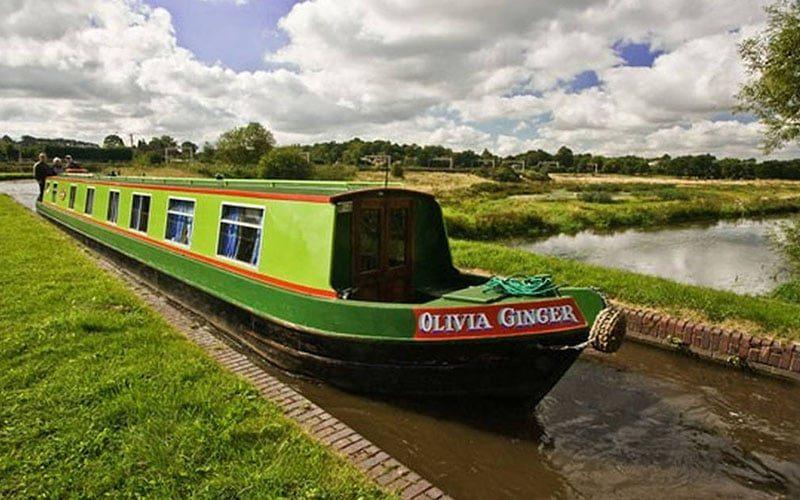 Olivia Ginger