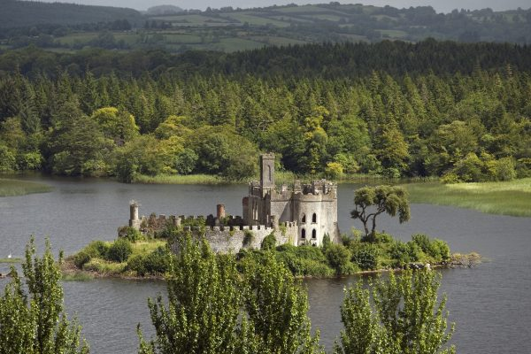 La forêt de Lough Key